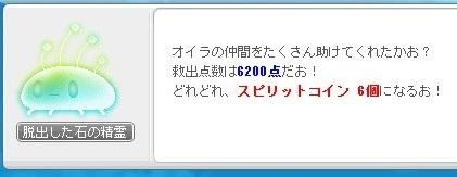 Maple16834a.jpg