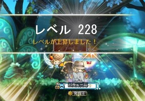 Maple16850a.jpg