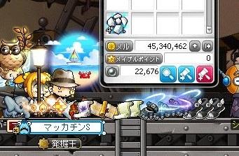 Maple16878a.jpg