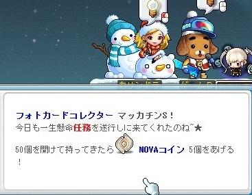 Maple16884a.jpg