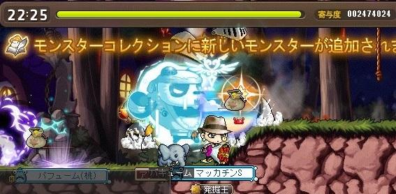 Maple16921a.jpg