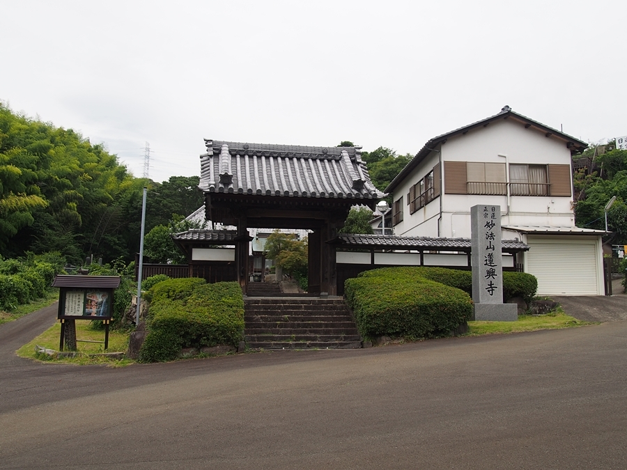 hasu-20170702-01.jpg
