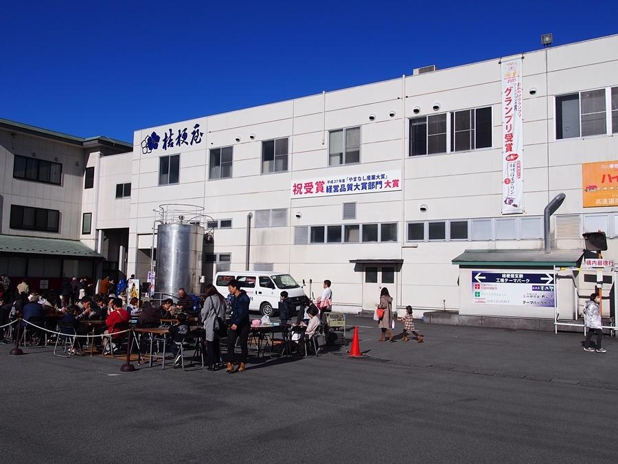 takeda-20180101-12.jpg