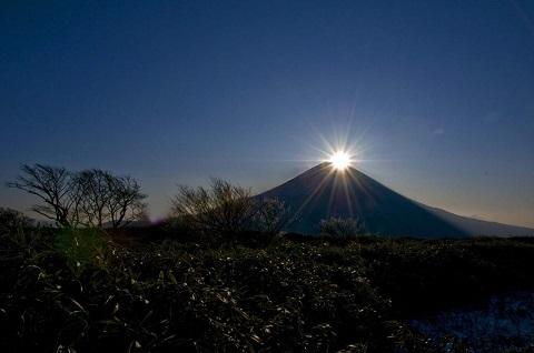 180105 富士山と松