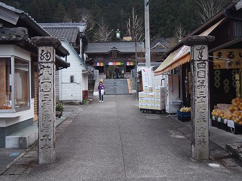kochi114.jpg