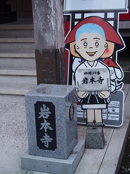 kochi123.jpg