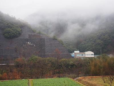 kochi163.jpg