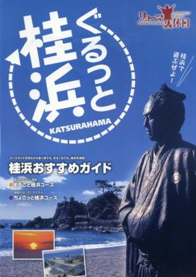 kochi186.jpg