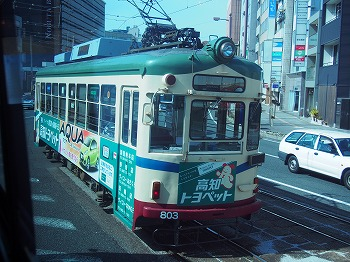 kochi19.jpg