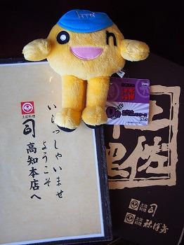 kochi33.jpg