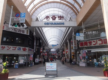 kochi43.jpg