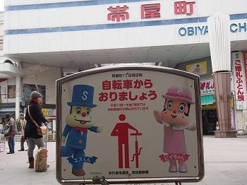 kochi60.jpg