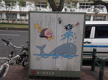 kochi72.jpg