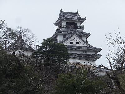 kochi75.jpg