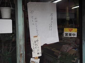 kochi99.jpg