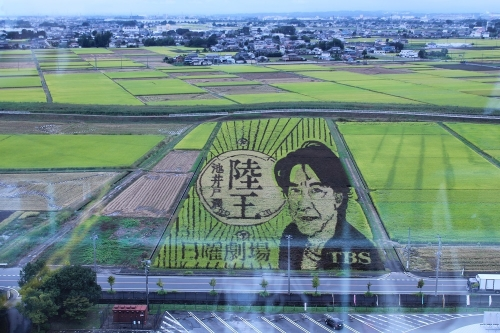 rikuou_20171109005551c1d.jpg