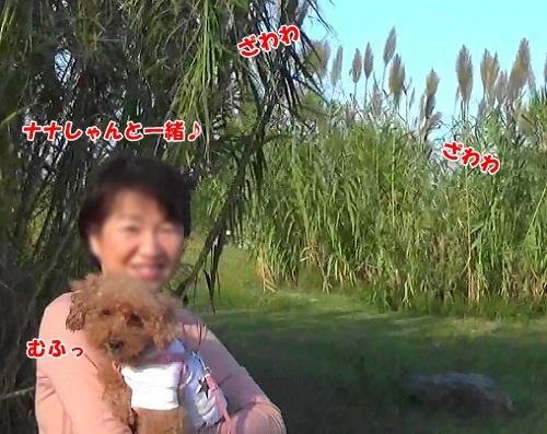 sMAH04553(1).jpg