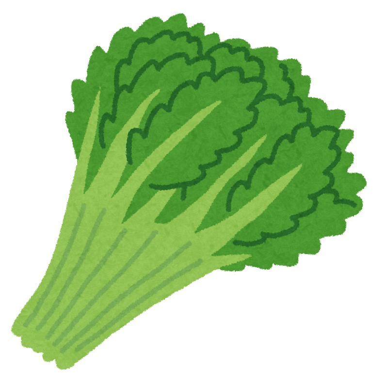 vegetable_syungiku.png