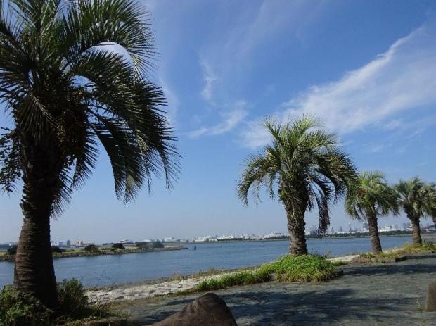 サイクリング@荒川河川敷 (3)