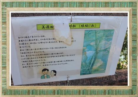 konomi風景7