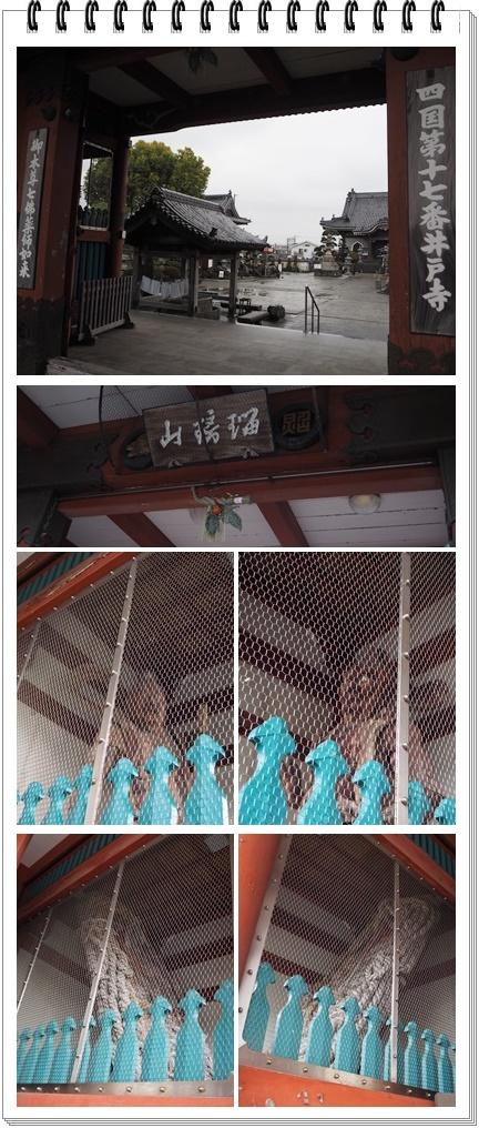 井戸寺131415