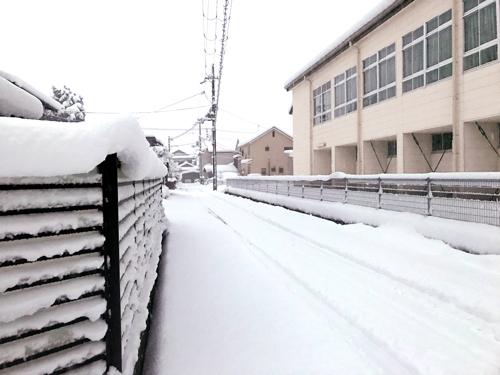 起きたら大雪