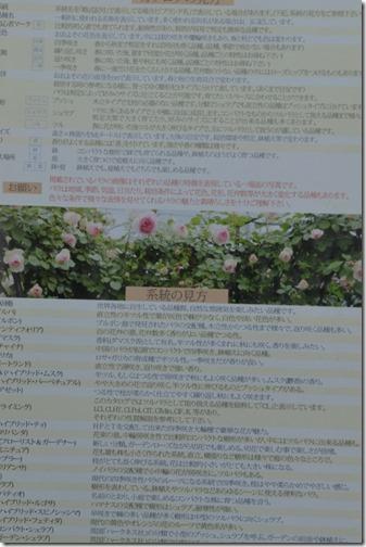 DCS_9230