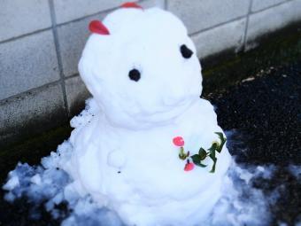 大雪一夜明けて7