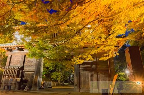 20171025弘前城公園紅葉3