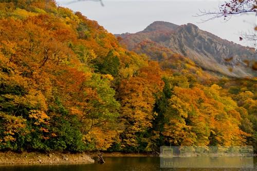 20171026白神山地の十二湖5