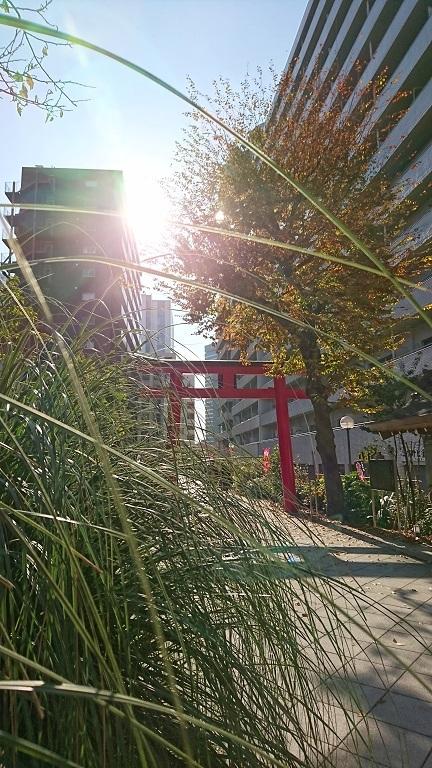11 成子天神社