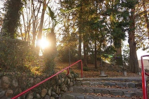 04 拝島日吉神社富士塚