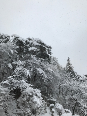 11月 花巻 雪
