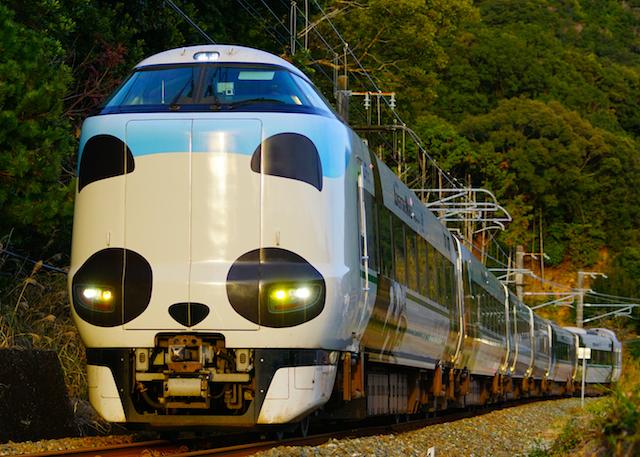 171215 JRW 287 panda2