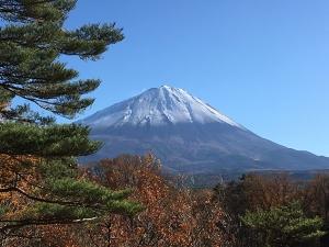 入り口の富士山