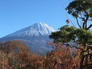 食堂からの富士山