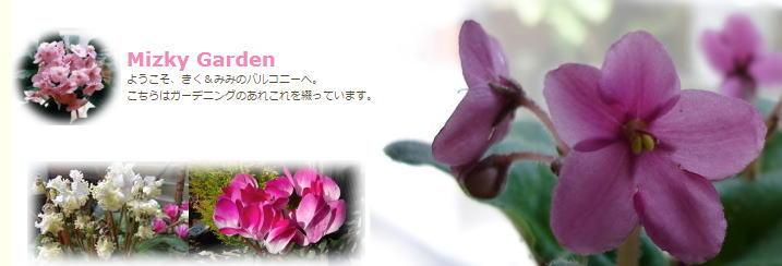 Mizky Garden