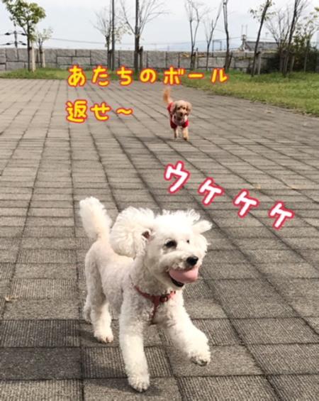 image2100202a.jpg