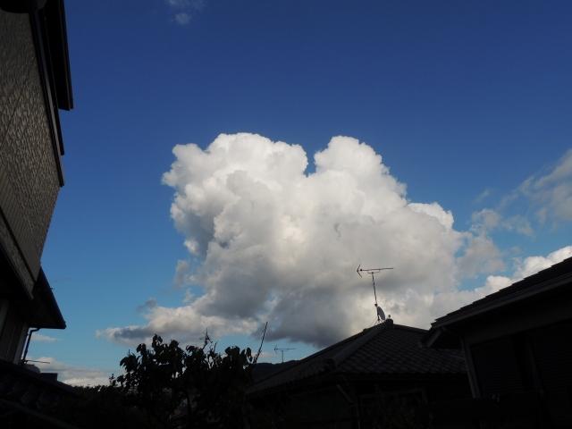 N9529秋の雲