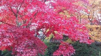 古峯神社3