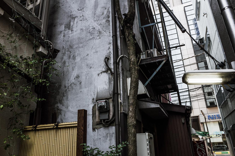 150322上野 (1 - 1)-8