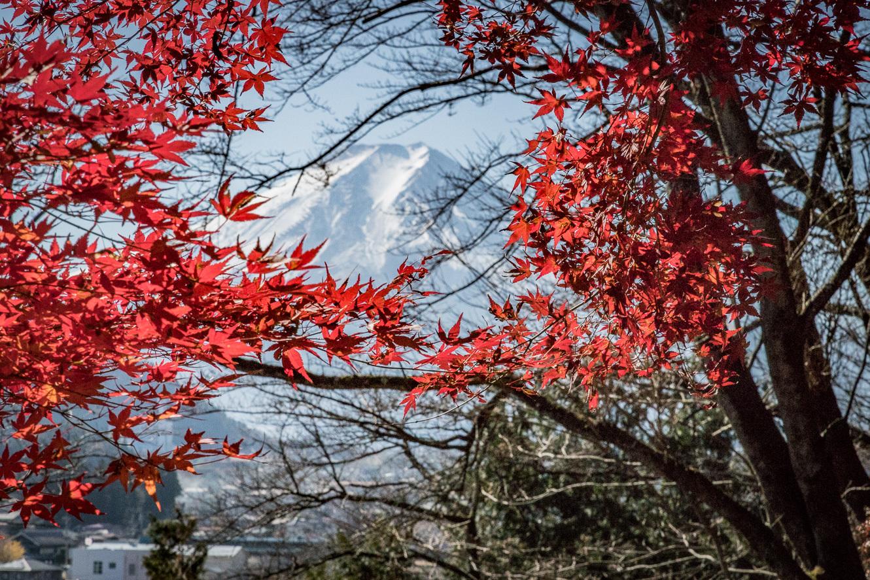 171503富士山-4244