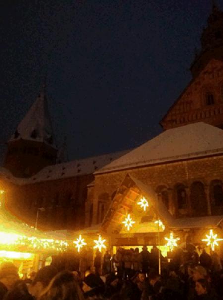 Mainz1.png
