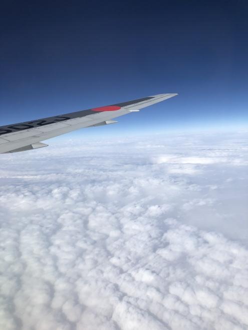真っ白な雲の上を飛んでいます