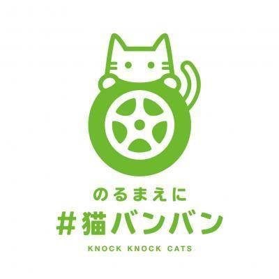猫バンバン(小)