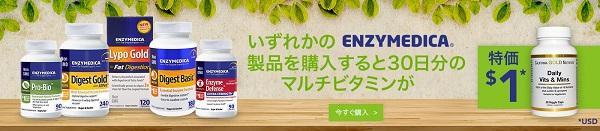 dsuppbanner1115ja-jp.jpg