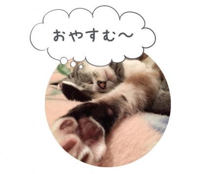 IMG_4372[1]
