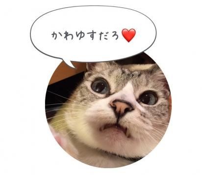IMG_4376[1]