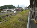 yoshino0004.jpg