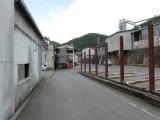 yoshino0008.jpg
